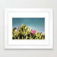 Beach Flower Framed Art Print
