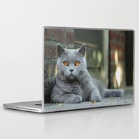 Laptop & iPad Skin featuring Diesel the cat ! by teddynash