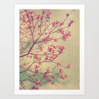 Vintage Pink Dogwood Tree in Flower Art Print