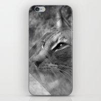 Broken Lynx iPhone & iPod Skin
