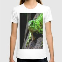 The Lizard King of Aruba Womens Fitted Tee White SMALL