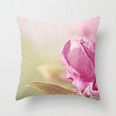 Authentic Behind The Scenes Throw Pillow