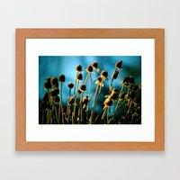 Light of the Sun Framed Art Print