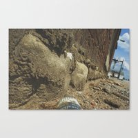 Ants View  Canvas Print