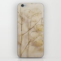Lunaria iPhone & iPod Skin