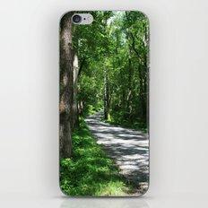 Sunny Path iPhone & iPod Skin