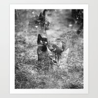 Les chats fantômes Art Print