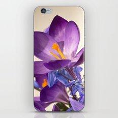 Flowers of love iPhone & iPod Skin
