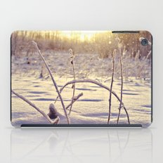 Alaskan Snowfall iPad Case