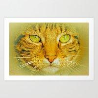 SPARKLE CAT Art Print