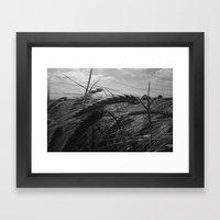 Summer Fields #1 Framed Art Print