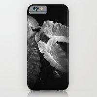 Elephant Ears in the Dark iPhone 6 Slim Case