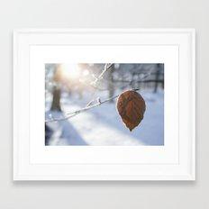 Frozen Beech leaf. Framed Art Print