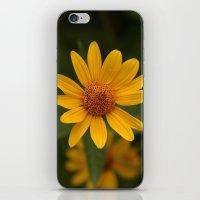 True Color iPhone & iPod Skin