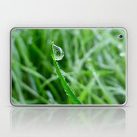 Morning Dew Laptop & iPad Skin