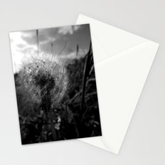 Soft Dandy Stationery Cards