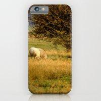Golden moment iPhone 6 Slim Case