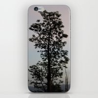Sunrise in Swaziland iPhone & iPod Skin