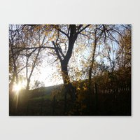 Third Day Of Winter Canvas Print