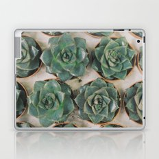 Succulent Collection Laptop & iPad Skin