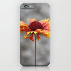 Firewheel Slim Case iPhone 6s