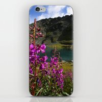 Fireweed - Hatcher Pass Alaska iPhone & iPod Skin