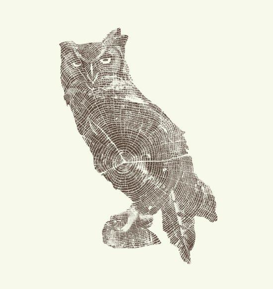 Wood Grain Owl Art Print