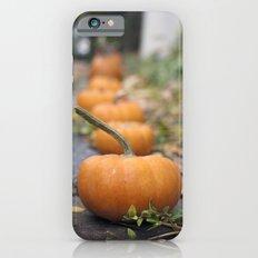 Pumkin Row iPhone 6 Slim Case