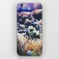 New York Aquarium Anemon… iPhone & iPod Skin