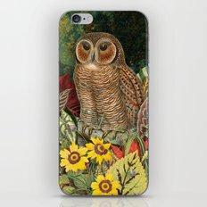 Owl Garden iPhone & iPod Skin