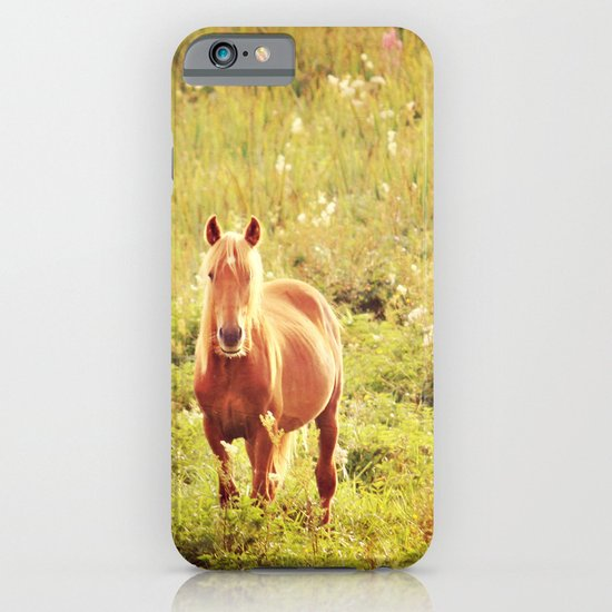 All the Pretty Horses iPhone & iPod Case