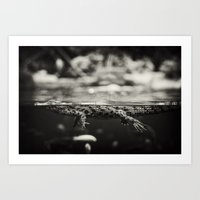 Baby Crocodile Art Print