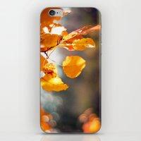 Embers II iPhone & iPod Skin