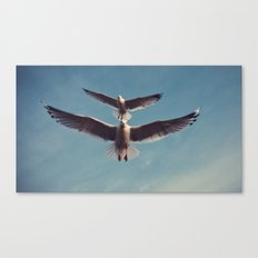 Gulls {Eight} Canvas Print