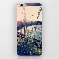 Floral Sunsets In May iPhone & iPod Skin