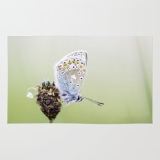 Common Blue Butterfly Rug
