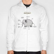 Anatomy of an Elephant Hoody