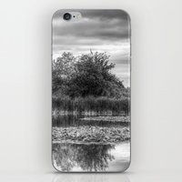 The Lily Pond iPhone & iPod Skin