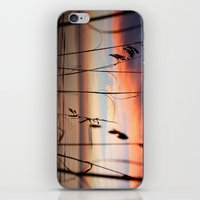 Sunset Sea Grass iPhone & iPod Skin