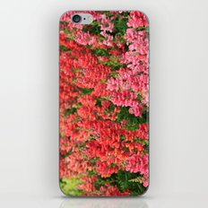 Snapdragons iPhone & iPod Skin