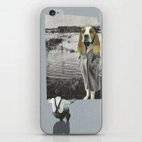 Tête De Chien iPhone & iPod Skin