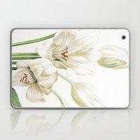 VI. Vintage Flowers Botanical Print by Pierre-Joseph Redouté - Crinum Jagus Laptop & iPad Skin