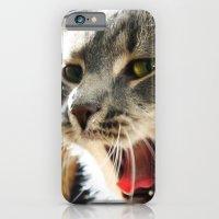 Cat Nap iPhone 6 Slim Case
