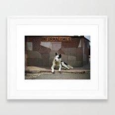 Informaciones Framed Art Print