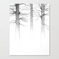 Three Kings Canvas Print