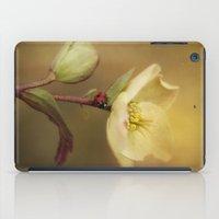Ladybird On Flower iPad Case