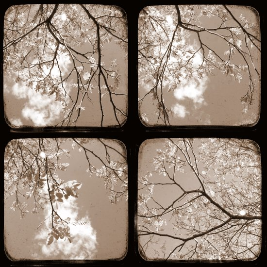 Look Through My Window - Through The Viewfinder (TTV) - Polyptych Art Print