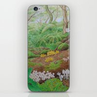 A Day of Forest (5). (dead wood ecosystem) iPhone & iPod Skin