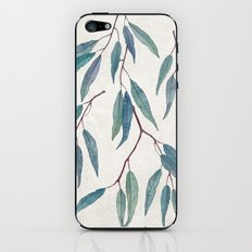 Eucalyptus leaves iPhone & iPod Skin