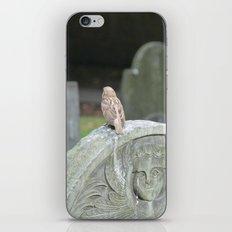 Sparrow in King's Chapel Burying Ground Boston iPhone & iPod Skin